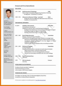 Sample resume and professional English CVs
